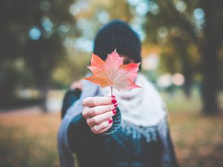 WE LOVE AUTUMN! Come read our Top 10 reasons why this season just freaking rocks
